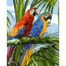 stramin papegaaien in regenwoud